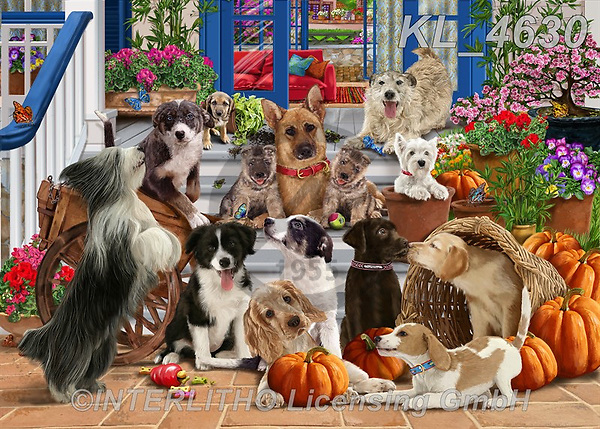 REALISTIC ANIMALS, REALISTISCHE TIERE, ANIMALES REALISTICOS, zeich1, paintings+++++,KL4630,#a#, EVERYDAY ,dogs,german shepherd,foxterrier,puppies,puzzle,puzzles.Franco
