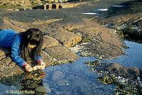 ON03-001z  Ocean - girl exploring tidepool on rocky beach - Acadia National Park, Maine
