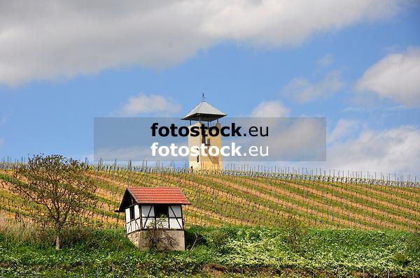 Weinbergshaus und Weinbergsturm bei Vendersheim
