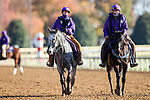 November 7, 2020 : Ponies escort horses before the FanDuel Mile presented by PDJF on Breeders' Cup Championship Saturday at Keeneland Race Course in Lexington, Kentucky on November 7, 2020. Wendy Wooley/Breeders' Cup/Eclipse Sportswire/CSM