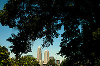 The Charlotte North Carolina skyline during the day, as seen through the trees of a close-in neighborhood. Charlotte is the largest city in North Carolina and the seat of Mecklenburg County. The Queen City, as it's nicknamed, also is a fast-growing metropolitan area. Often several skyscraper highrise buildings are under construction at once.