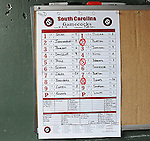 Photo of the roster for the South Carolina Gamecocks in a game against the Furman Paladins on Wednesday, April 3, 2013, at Fluor Field at the West End in Greenville, South Carolina. (Tom Priddy/Four Seam Images)