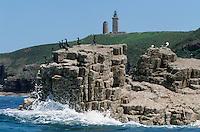 Europe/France/Bretagne/22/Côtes d'Armor/Cap Fréhel: Cormorans sur un ilot rocheux à l'arrière plan le Cap et son phare