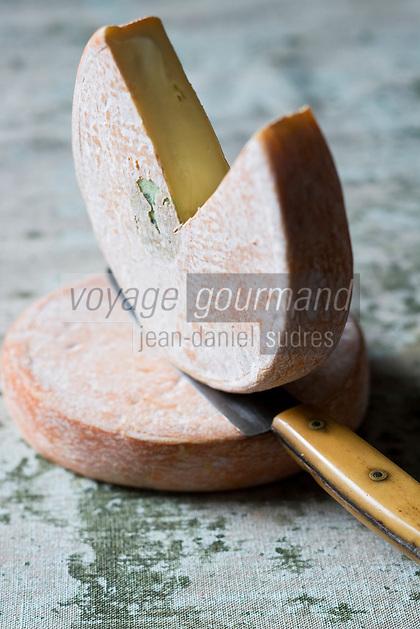 Europe/France/ Rhône-Alpes/74/Haute-Savoie: Fromage AOC Reblochon fermier - Stylisme : Valérie LHOMME