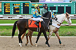 January 16, 2016: Roman Approval with Shaun Bridgmohan up in the Col. E.R. Bradley Handicap race at the Fairgrounds race course in New Orleans Louisiana. Steve Dalmado/ESW/CSM