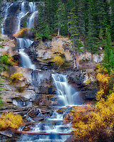 Tangle Falls with fall colored willows. Jasper National Park, Alberta, Canada