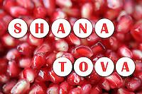 Shana Tova Greeting <br /> ברכת שנה טובה
