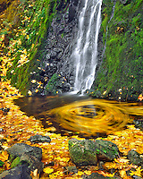 Starvation Creek falls creating maple leaf movement on water in Columbia River Gorge National Scenic Area, Oregon