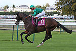 October 02, 2016, Chantilly, FRANCE - Vedevani with Alexis Badel up at the Qatar Prix de'l Arc de Triomphe (Gr. I) at  Chantilly Race Course  [Copyright (c) Sandra Scherning/Eclipse Sportswire)