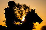 APRIL 27, 2015: Scenes from morning workouts as horses exercise for the Kentucky Derby and Kentucky Oaks at Churchill Downs in Louisville, Kentucky. Jon Durr/ESW/Cal Sport Media