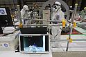 Japan Atomic Energy Agency decommissioning training