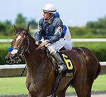 10 July 2010: Bronx City Girl and Jockey Elvis Trujillo after the Azalea Stakes at Calder Race Course in Miami Gardens, FL.