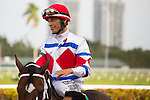 HALLANDALE BEACH, FL- MARCH 19: JS Bach #5 with jockey John Velazquez aboard after winning the 10th race at Gulfstream Park on March 19, 2016 in Hallandale Beach, Florida. (Photo by Arron Haggart/Eclipse Sportswire/Getty Images)