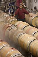 Asie/Israël/Galilée/Plateau du Golan/Quazrin: Golan Heights Winery nettoyage des barriques