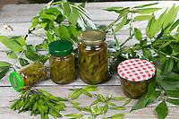 Eingelegte Eschenfrüchte, Unreife Eschen-Früchte eingelegt in Essig, Gemeine Esche, Gewöhnliche Esche, unreife, grüne Frucht, Früchte, Fraxinus excelsior, Common Ash, European Ash, pickled fruit