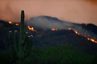 Aug. 14, 2012; Desert mountain sunset sky fire cloud wildfire smoke cactus Saguaro Mandatory Credit: Mark J. Rebilas