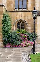 UK, England, Cambridge.  Corpus Cristi College, Corner of the Courtyard.