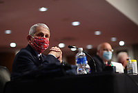 Dr. Anthony Fauci, director of the National Institute for Allergy and Infectious Diseases, wears a face mask while testifying before the Senate Health, Education, Labor and Pensions (HELP) Committee on Capitol Hill in Washington DC on Tuesday, June 30, 2020.  Fauci and other government health officials updated the Senate on how to safely get back to school and the workplace during the COVID-19 pandemic. <br /> Credit: Kevin Dietsch/CNP/AdMedia