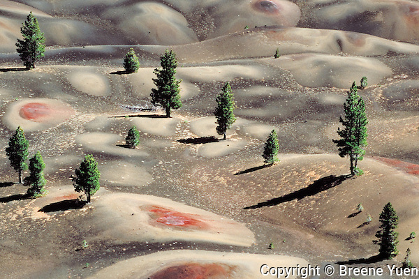 View of a Painted Desert in Lassen National Park, California