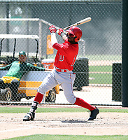 D'Shawn Knowles - Los Angeles Angels 2019 extended spring training (Bill Mitchell)