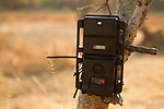 Panthera camera trap, Kafue National Park, Zambia