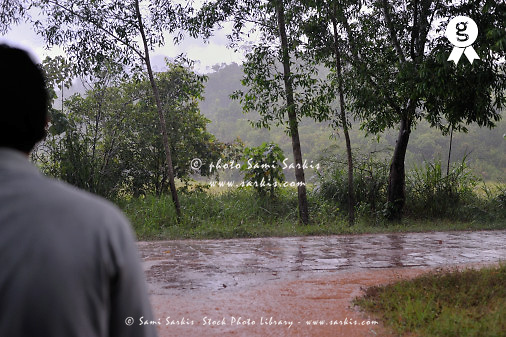 Man watching heavy rain on country road (Licence this image exclusively with Getty: http://www.gettyimages.com/detail/83154220 )