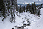 Soda Butte Creek, Yellowstone NP, WY, USA