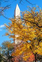 Washington Monument Autumn in Washington DC