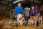 Eoghan O'Connor from Emlaghpeste, Portmagee with is son Paddy Jnr & nephews Darragh & Kevin O'Connor with the triplets from his Charolais cow of 10 years.