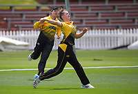 Wellington's Beth Molony fields during the women's Hallyburton Johnstone Shield one-day cricket match between the Wellington Blaze and Northern Districts at the Basin Reserve in Wellington, New Zealand on Sunday, 22 November 2020. Photo: Dave Lintott / lintottphoto.co.nz
