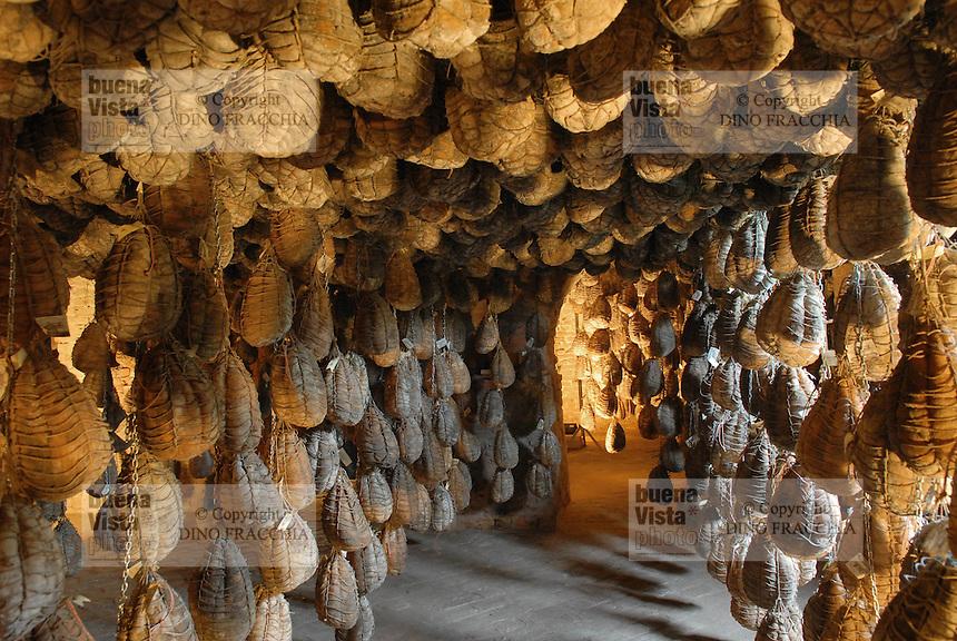 - aging of culatello ham at the agricultural company Spigaroli<br /> <br /> - stagionatura del culatello presso l'azienda agricola Spigaroli