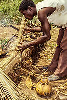 Cote d'Ivoire, Ivory Coast, West Africa.  Stages of Making Palm Wine:  Baole Man blowing air on heated sticks to make palm juice flow.  Lolobo Village, Central Cote d'Ivoire.