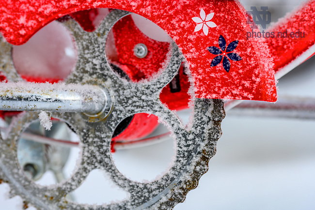 February 17, 2021; Bike covered in a freezing frost. (Photo by Matt Cashore/University of Notre Dame)