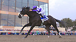 Handsome Mike (no. 3), ridden by Irad Ortiz Jr. and trained by Leandro Mora, wins the 33rd running of the grade 2 Pennsylvania Derby for three year olds on September 22, 2012 at Parx Racing in Bensalem, Pennsylvania.  (Bob Mayberger/Eclipse Sportswire)