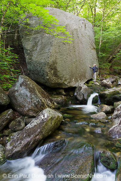Snyder Brook in Randolph, New Hampshire during the summer months.