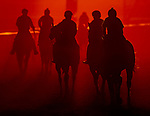 October 26, 2019 : Horses exercise at sunrise in preparation for the 2019 Breeders' Cup at Santa Anita Park in Arcadia, California on October 26, 2019. Scott Serio/Eclipse Sportswire/Breeders' Cup/CSM