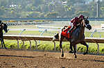 DEL MAR, CA  AUGUST 1:  #7 Shedaresthedevil, ridden by Florent Geroux, making it look easy in the stretch of the Clement L. Hirsch Stakes (Grade 1) Breeders Cup Win and You're In Distaff Division on August 1, 2021 at Del Mar Thoroughbred Club in Del Mar, CA.