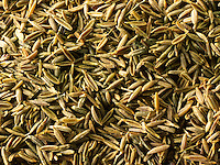 Whole Cumin Seeds - stock photos
