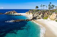 Beautiful white sand Treasure Island beach, turquoise Pacific Ocean, and palm trees, with western gulls on the rocks, in Laguna Beach, California USA