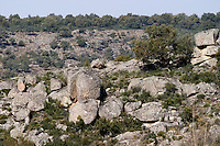 boulders in the fields Bodega La Setera, DO Arribes del Duero spain castile and leon
