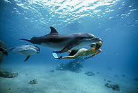 Dolphin trainer swims with Bottlenose Dolphins, Tursiops truncatus,, mother and calf, Dolphin Reef, Eilat, Israel, Red Sea.