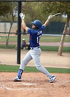 Tyler Colvin - Los Angeles Dodgers 2018 spring training (Bill Mitchell)