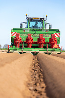 Four row potato planting - Lincolnshire, April