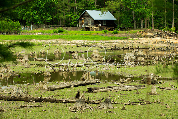 Photography of Carver Creek State Park  - Long Valley Farm , the historic retreat of a Rockefeller family member, as the park continues to develop recreation opportunities. However, a dramatic flood in September 2016 severely damaged a dam and 100-acre millpond that is a significant park feature. Visitor can hike through longleaf pine forests.<br /> <br /> Charlotte Photographer - PatrickSchneiderPhoto.com