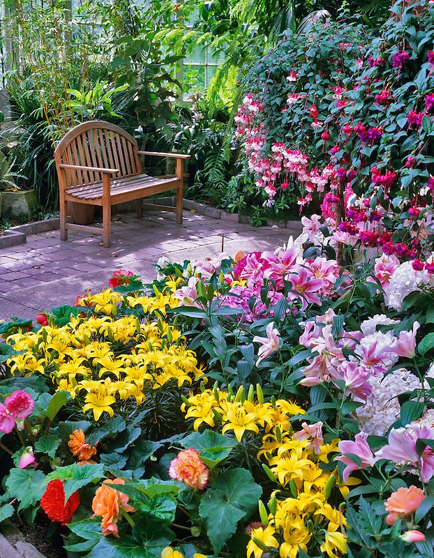 A variety of flowers and bench in WW Seymour Botanical Conservatory. Tacoma, Washington