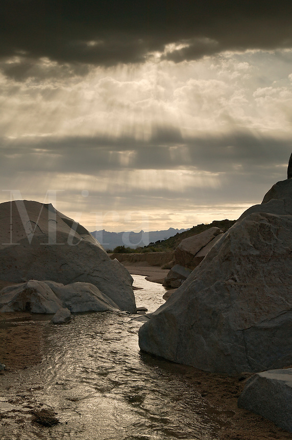A stream in Grapevine Canyon, along Christmas Tree Pass road Lake Mead Recreation Area, near Laughlin, Nevada