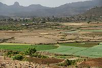 ETHIOPIA, Amhara, irrigated fields with onions during dry season in village in highland near Gondar / AETHIOPIEN, Amhara, Gonder, bewaesserte Felder mit Zwiebeln eines Dorfes im Hochland waehrend der Trockenzeit