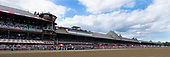 8th Vanderbilt Stakes - Lexitonian