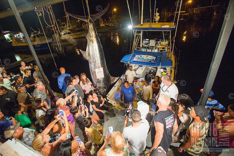 Spectators pose with a Pacific Blue marlin grander at Honokohau Harbor, Kailua-Kona, Big Island.