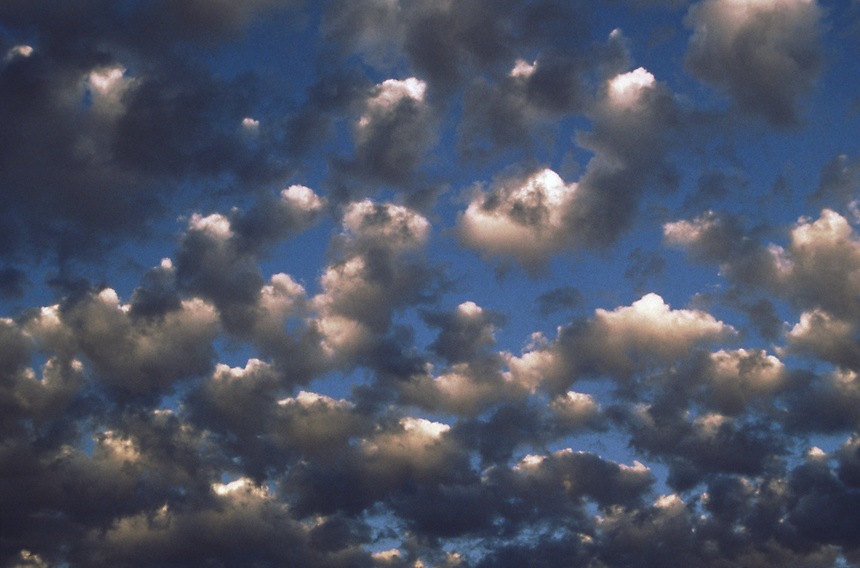 Altocumulus Castellanus clouds are shown here in an interesting sort of half light produced by the setting sun.